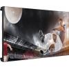 Информационная панель LG 55LV75A, купить за 496 690руб.