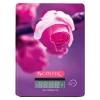 Кухонные весы Centek CT-2459 (роза), купить за 940руб.