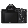 �������� ����������� Sony Alpha A7S Body, ������, ������ �� 141 199 ���.