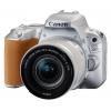 Canon EOS 200D Kit (18-55mm DC III) черный с сумкой, купить за 35 910руб.