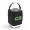 Портативная акустика Ritmix RPB-8800LT (15119245), черная-зеленая, купить за 1 835руб.