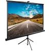 Cactus TriExpert CS-PSTE-160x160-BK, черный, купить за 3 960руб.