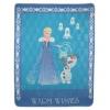 Нордтекс Disney (160х200см) Warm wishes, микрофибра, купить за 1 809руб.