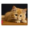 Speedlink SILK (230x190x1.5 мм), котёнок, купить за 625руб.