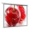 Экран ViewScreen Lotus WLO-1103 (180x180) MW, купить за 3 115руб.