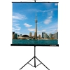 Экран Lumien Eco View LEV-100102, купить за 4 200руб.