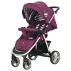 Коляска Rant CASPIA Trends RA058 Lines purple, прогулочная, купить за 12 990руб.