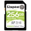 Карту памяти SDHC Kingston SDS2/256GB, Canvas Select 100R CL10 UHS-I, купить за 2545руб.