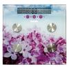 Напольные весы BBK BCS7000 фиолетовые/розовые, купить за 1 210руб.