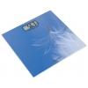 Напольные весы Rolsen RSL1519Light, синие, купить за 915руб.