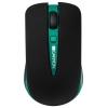 Canyon CNS-CMSW6G Black-Green USB (радиоканал), купить за 920руб.