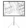 Экран Cactus Triscreen 127x127 см, купить за 3 955руб.