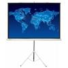 Экран Cactus Triscreen (150x150 см) белый, купить за 4 025руб.