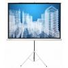 Экран Cactus Triscreen  CS-PST-104x186 белый, купить за 4 695руб.