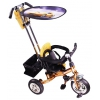 Трехколесный велосипед Liko Baby LB-772, бронзовый, купить за 5 900руб.