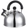 Чайник для плиты Добрыня DO-2902 3,0л, купить за 580руб.