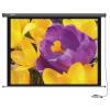 Экран Cactus Professional Motoscreen CS-PSPM, 168x299 см, купить за 12 855руб.