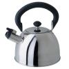 Чайник для плиты Regent  93-2003, купить за 1 550руб.