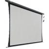 Экран Cactus Professional Tension Motoscreen CS-PSPMT-168x299, Черный, купить за 18 685руб.