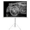 Экран Cactus Triscreen CS-PST, Белый, купить за 5 160руб.