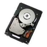 жесткий диск IBM 500GB 2.5in SFF HS 7.2K 6Gbps NL SATA HDD (81Y9726)