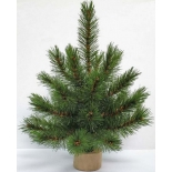 новогодняя елка Triumph Tree Лесная красавица 30 см, зеленая