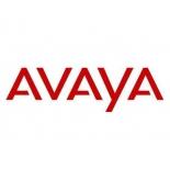 сервер Avaya S8300E SERVER - NON GSA (700508955)