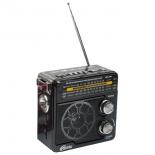 Радиоприемник Ritmix RPR-202 Bl, черный