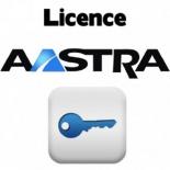 мини-АТС Aastra OM System Licence 10, лицензия