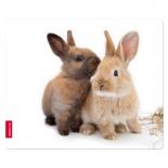 коврик для мышки Speedlink SL-6242-RABBIT, Silk Rabbit