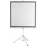 экран Digis Kontur-D DSKD-1104, белый