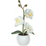 светильник настольный СТАРТ LED Орхидея 1 белый