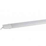 светильник настенный ЭРА SPP-3-20-6K-M (промышленный )