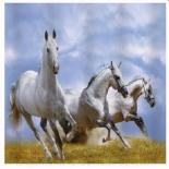 занавесь для ванной комнаты Brimix 02-11, Тройка лошадей (фотопечать)