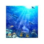 занавесь для ванной комнаты Brimix 02-09, Морское дно (фотопечать)