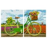 картина по номерам Диптрих Schipper Голландский велосипед 80х50 см