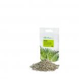 грунт для растений Субстрат Lechuza PON 6 L