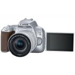 цифровой фотоаппарат Canon EOS 250D Kit (объектив EF-S 18-55mm IS STM), серебристый