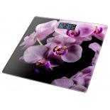 весы напольные Marta MT-1676 Орхидея