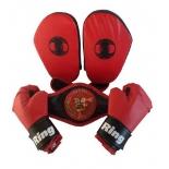 детский боксерский набор RealSport ЛИДЕР (перчатки, лапы, пояс чемпиона)