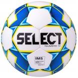 мяч футбольный Select Numero 10 IMS 810508 (2019) размер: 5