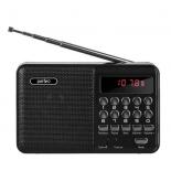 радиоприемник PERFEO PF-A4870 черный