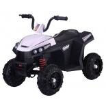 велоквадроцикл детский RiverToys T111TT, белый