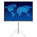 экран Cactus Triscreen (150x150 см) белый