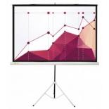 экран Cactus Triscreen 180x180 см