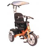 Трехколесный велосипед Liko Baby LB-778, бронзовый