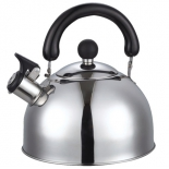 чайник для плиты Добрыня DO-2902 3,0л