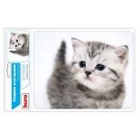 коврик для мышки Buro BU-M40087 (рисунок/котёнок)