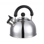 чайник для плиты Добрыня DO-2903 (2,5 л)