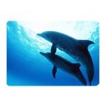 коврик для мышки Buro BU-M40083, дельфины